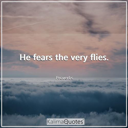 He fears the very flies. - Proverbs