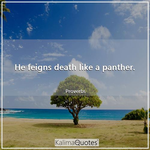 He feigns death like a panther. - Proverbs