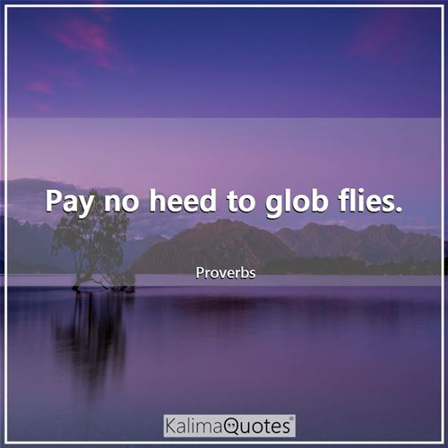 Pay no heed to glob flies.