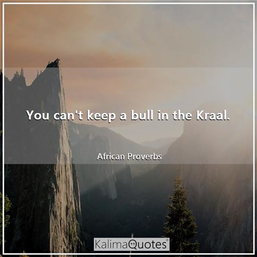 You can't keep a bull in the Kraal.