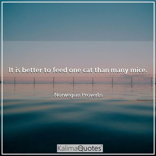 It is better to feed one cat than many mice.