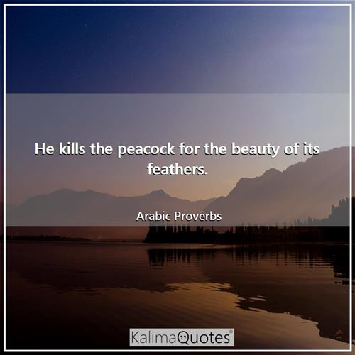He kills the peacock for the beauty of its feathers. - Arabic Proverbs