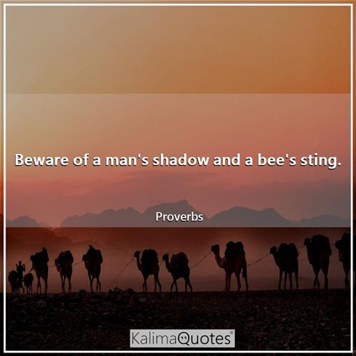 Beware of a man's shadow and a bee's sting.
