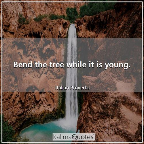 Bend the tree while it is young.