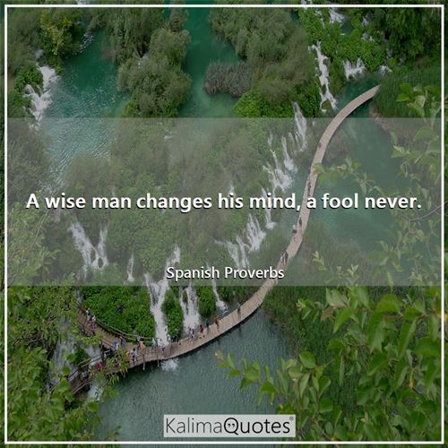 A wise man changes his mind, a fool never.