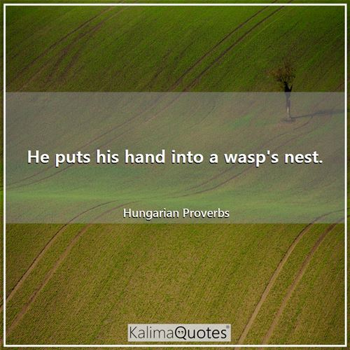 He puts his hand into a wasp's nest.