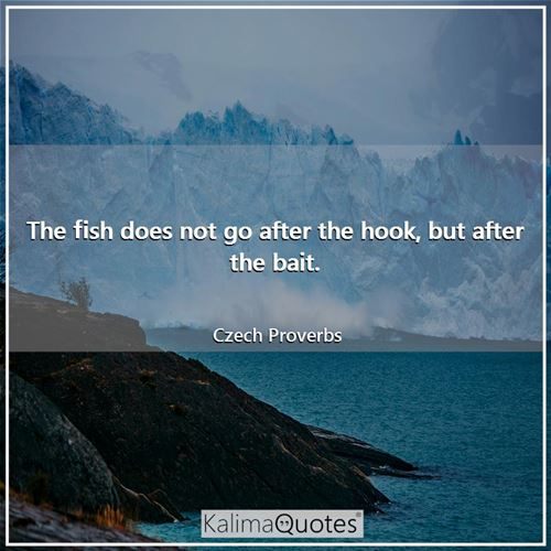 The fish does not go after the hook, but after the bait.