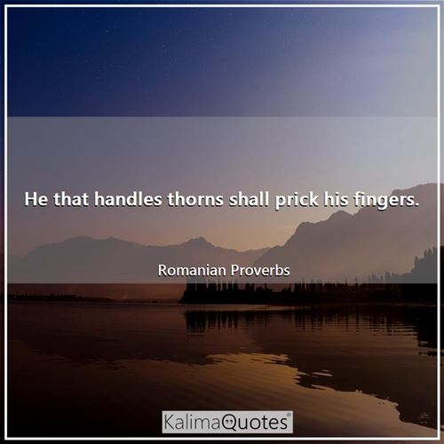 He that handles thorns shall prick his fingers. - Romanian Proverbs