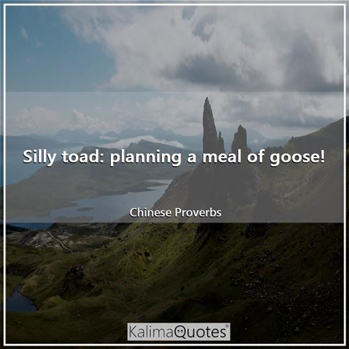 Silly toad: planning a meal of goose!