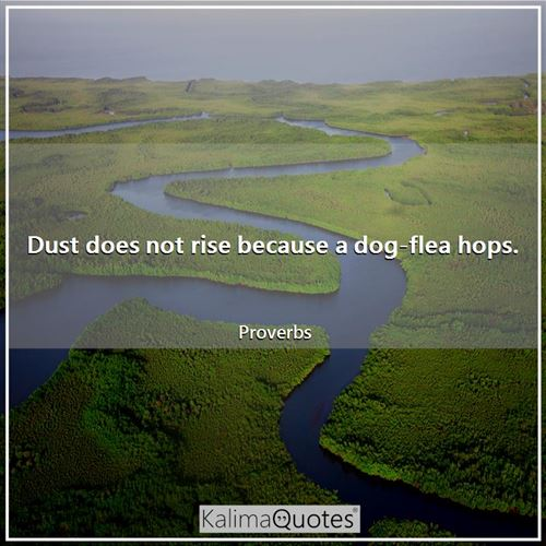 Dust does not rise because a dog-flea hops.