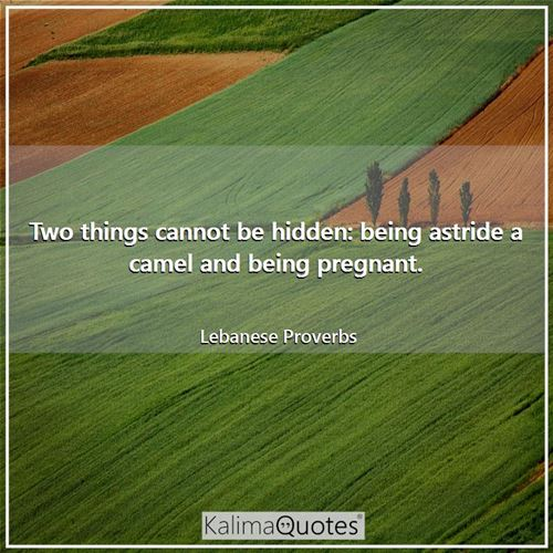 Two things cannot be hidden: being astride a camel and being pregnant.
