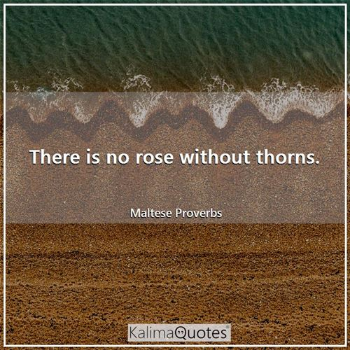 There is no rose without thorns.