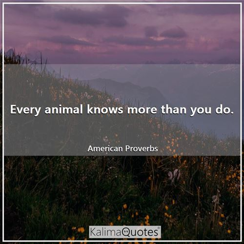 Every animal knows more than you do.