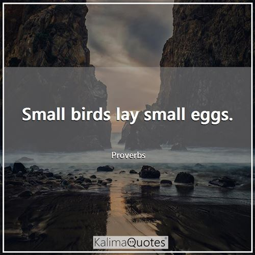 Small birds lay small eggs.