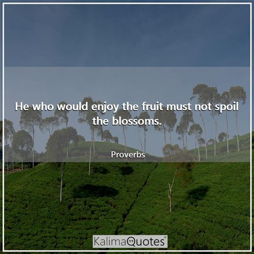 He who would enjoy the fruit must not spoil the blossoms.