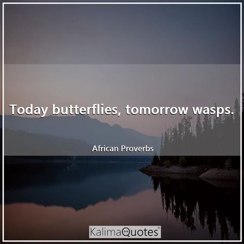 Today butterflies, tomorrow wasps. - African Proverbs