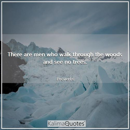 There are men who walk through the woods and see no trees.