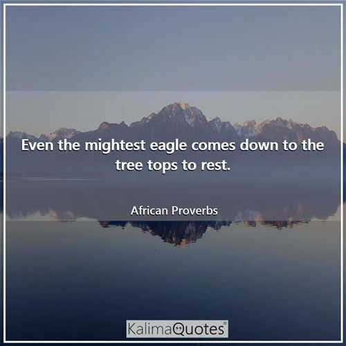 Even the mightest eagle comes down to the tree tops to rest.