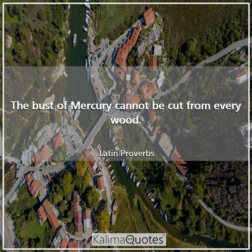 The bust of Mercury cannot be cut from every wood.