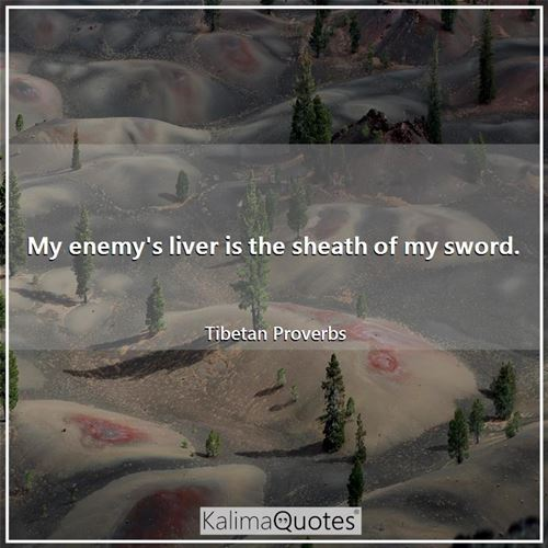 My enemy's liver is the sheath of my sword.