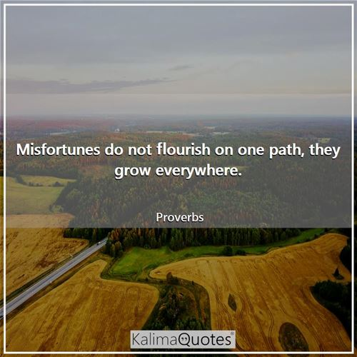 Misfortunes do not flourish on one path, they grow everywhere.