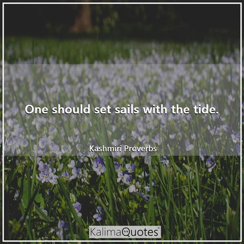 One should set sails with the tide.