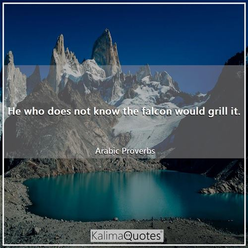 He who does not know the falcon would grill it. - Arabic Proverbs