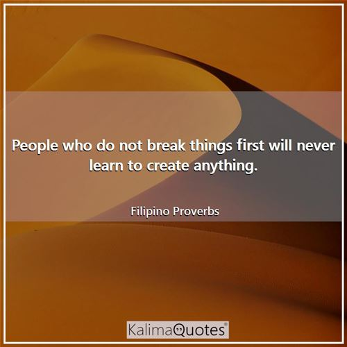 People who do not break things first will never learn to create anything.