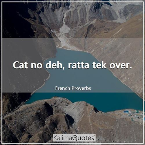 Cat no deh, ratta tek over.