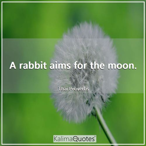 A rabbit aims for the moon.