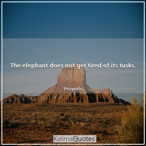 The elephant does not get tired of its tusks.