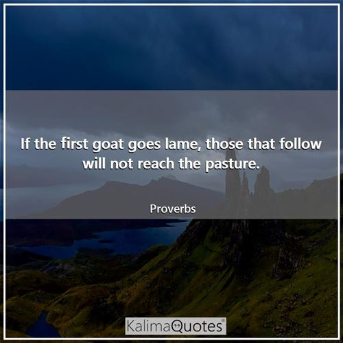 If the first goat goes lame, those that follow will not reach the pasture.