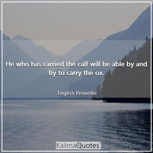 He who has carried the calf will be able by and by to carry the ox.