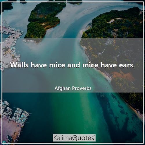 Walls have mice and mice have ears.
