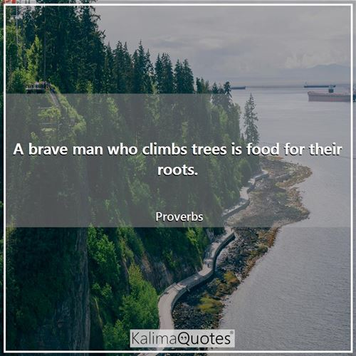 A brave man who climbs trees is food for their roots.