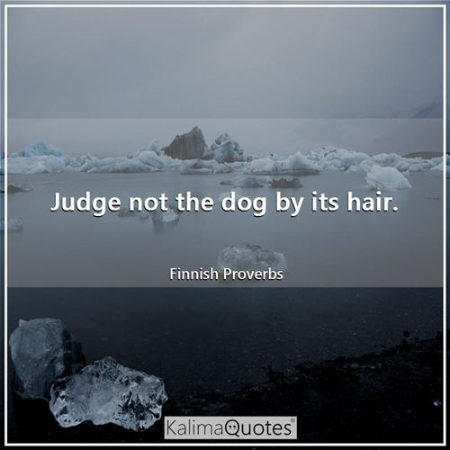 Judge not the dog by its hair.