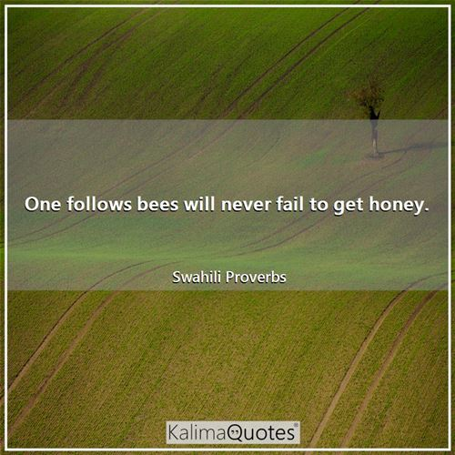 One follows bees will never fail to get honey.