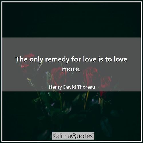 The only remedy for love is to love more.