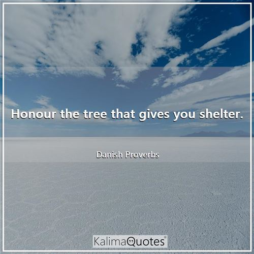 Honour the tree that gives you shelter.