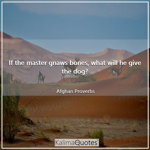 If the master gnaws bones, what will he give the dog? - Afghan Proverbs