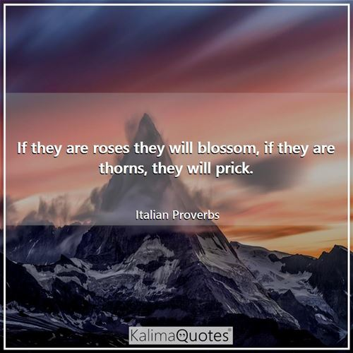 If they are roses they will blossom, if they are thorns, they will prick. - Italian Proverbs