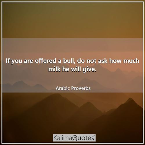 If you are offered a bull, do not ask how much milk he will give.