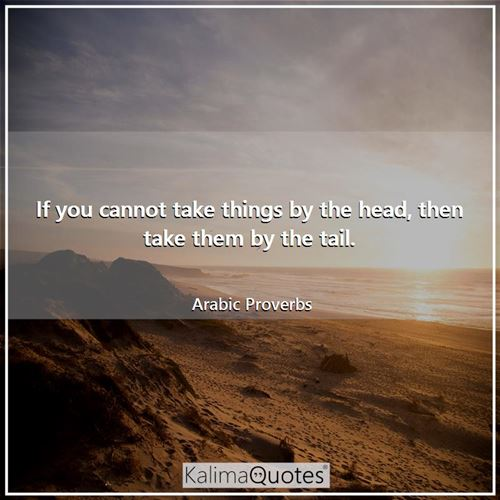 If you cannot take things by the head, then take them by the tail.