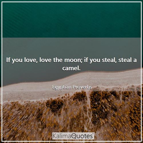 If you love, love the moon; if you steal, steal a camel.