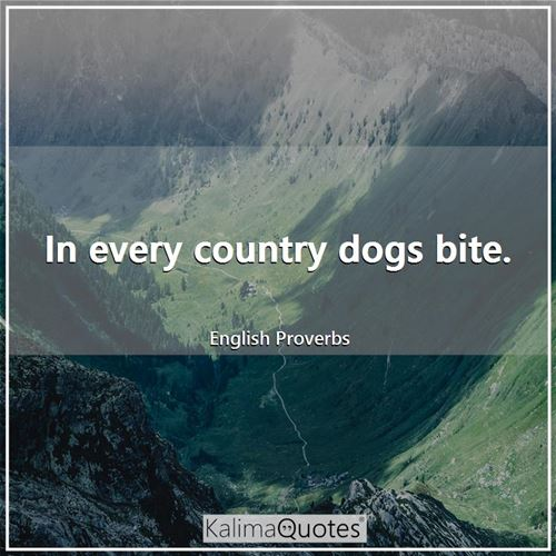 In every country dogs bite.