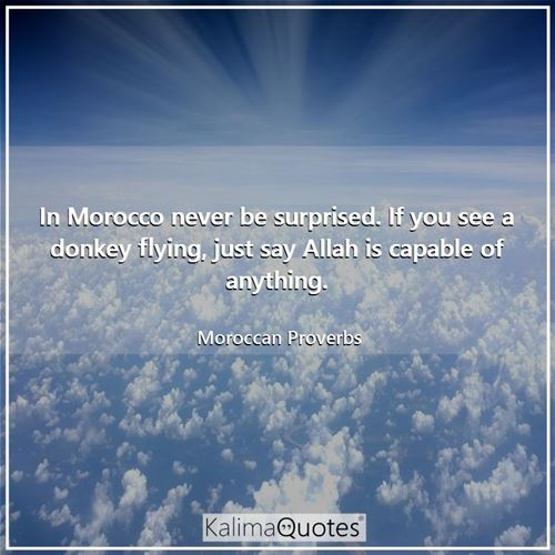 In Morocco never be surprised. If you see a donkey flying, just say Allah is capable of anything. - Moroccan Proverbs