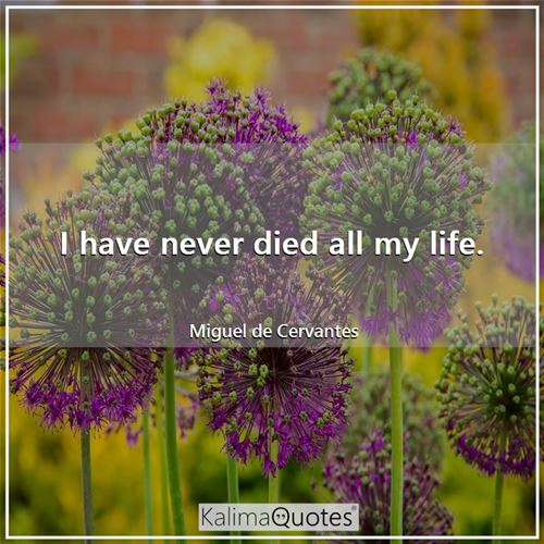 I have never died all my life. - Miguel de Cervantes