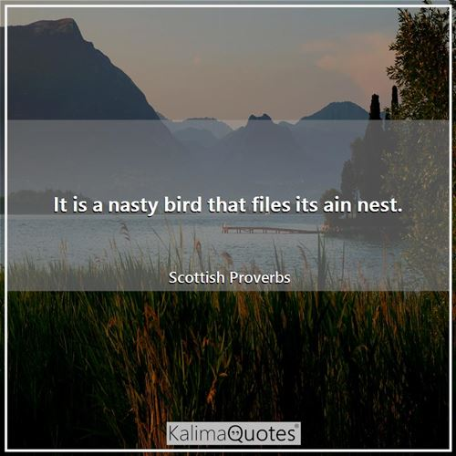 It is a nasty bird that files its ain nest.