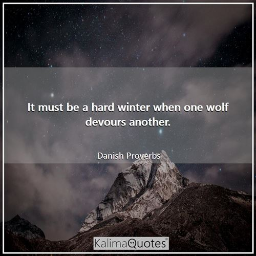 It must be a hard winter when one wolf devours another. - Danish Proverbs