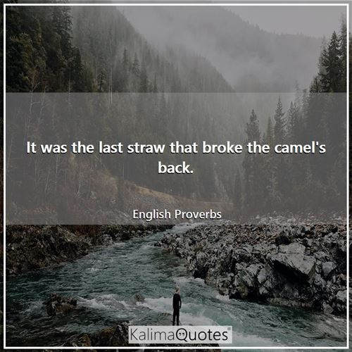 It was the last straw that broke the camel's back. - English Proverbs